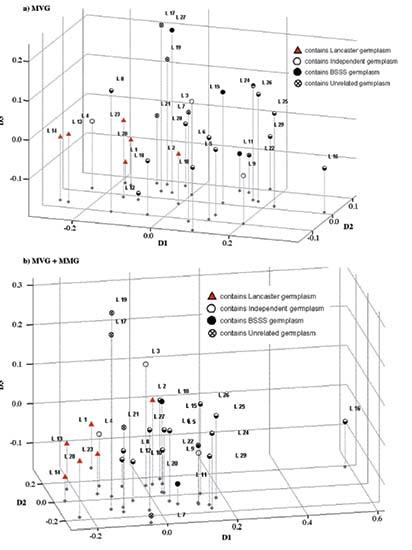Aupov Morphological Versus Molecular Markers For Maize Inbred Lines