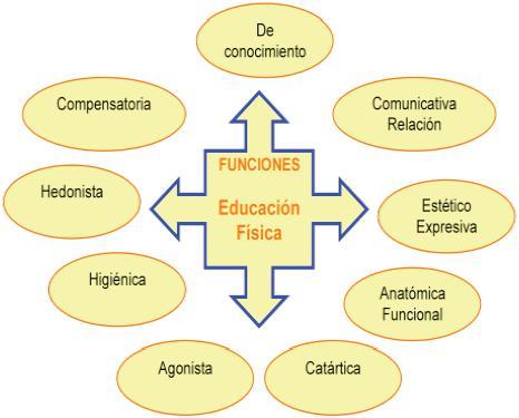 Las funciones de la educaci n f sica escolar una mirada for Funcion de un vivero escolar