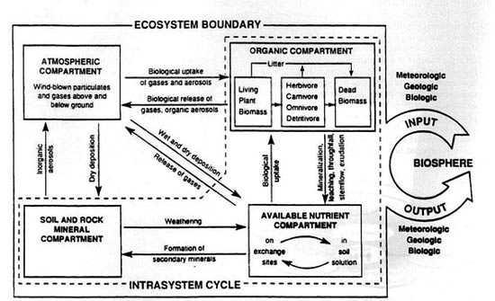 Hydrology study guide key