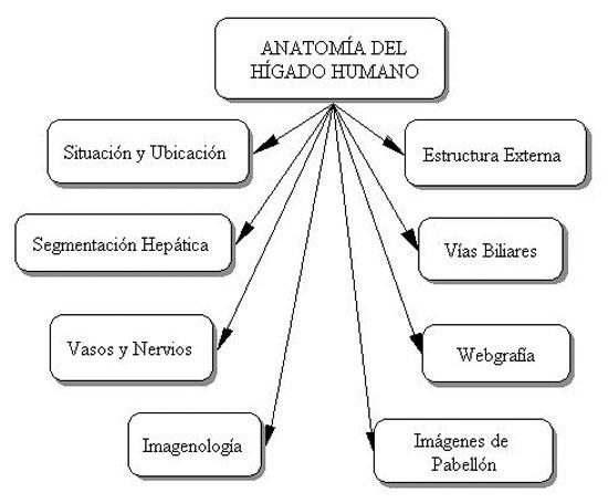 Metodología de Construcción de Objetos de Aprendizaje para la ...