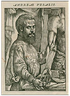 Andreas Vesalius (1514-1564): Fundador de la Anatomía Humana Moderna