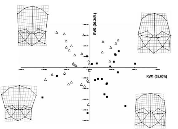 Morfometría Geométrica Y El Estudio De Las Formas Biológicas