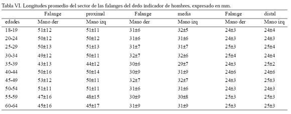 mediciones humanas promedio