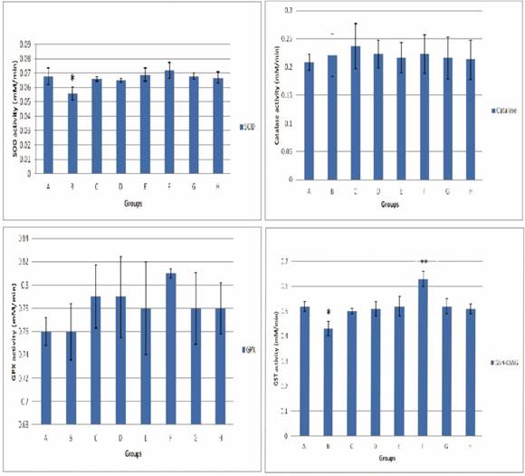 Comparación de los Efectos Antioxidantes en la Intervención con