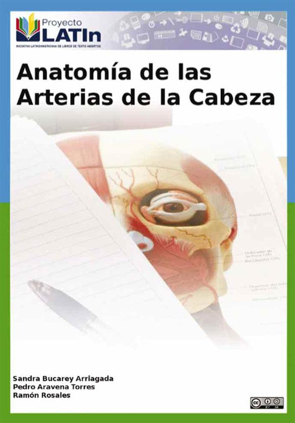 Anatomía de las Arterias de la Cabeza: Un Recurso Educativo Abierto ...
