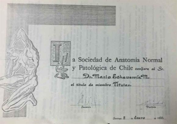 Los Orígenes de la Sociedad de Anatomía Normal y Patológica de Chile