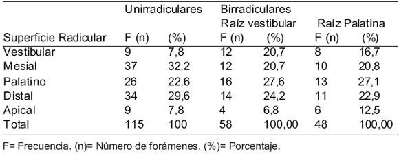 Número y Disposición de los Forámenes Apicales en la Superficie ...