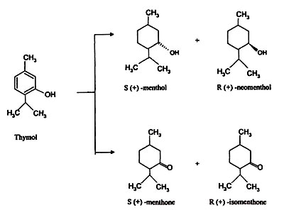 Image result for thymol to menthol