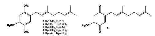 Eas In Natural Product Synthesis