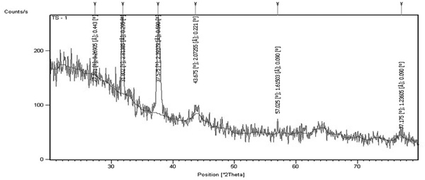 phytosynthesis of silver nanoparticles using e  camaldulensis leaf extract and their