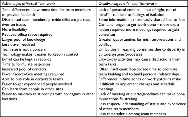 An Analysis of Virtual Team Characteristics: A Model for Virtual