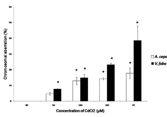 Sensitivity Of Allium Cepa And Vicia Faba Towards Cadmium Toxicity