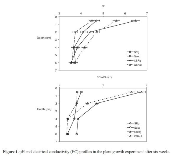 Effect of a compost mulch on seed germination and plant for Soil and plant lab
