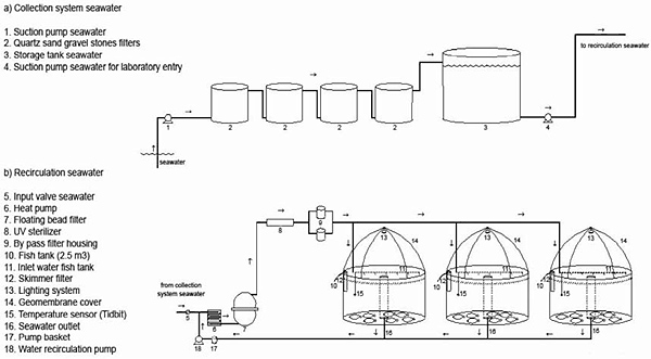 Cuno Water Filter Systems Food Service