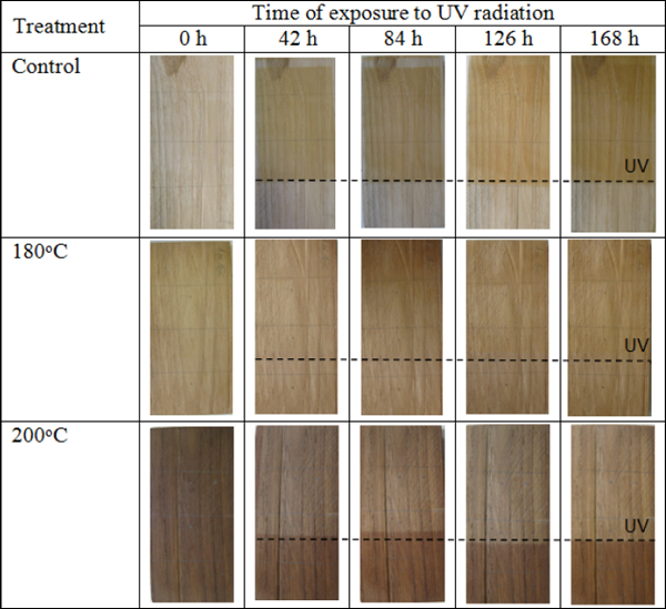 Color Change Of Untreated And Heat Treated Heartwood And Sapwood Of Teak  (Tectona Grandis) Exposed To Ultraviolet (UV) Radiation In Accelerated  Aging ...