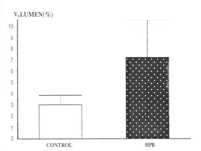 volumen de una prostata normal