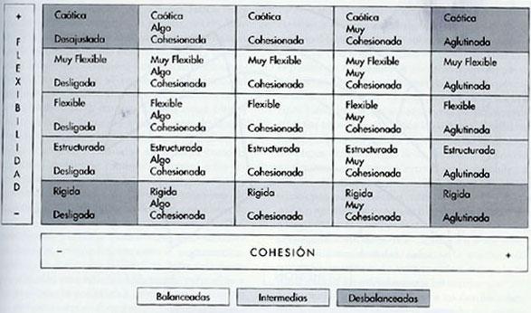 Características Individuales Y De La Estructura Familiar De
