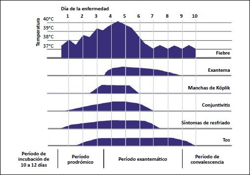 Sarampion La Enfermedad Epidemiologia Historia Y Los