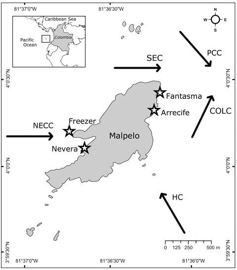 Estructura poblacional de Megabalanus peninsularis en la isla Mapelo ...