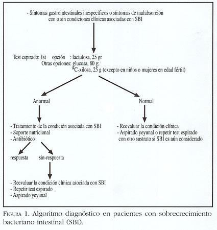 test de sobrecrecimiento bacteriano con lactulosa