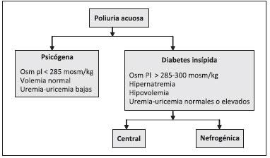 densidad urinaria y diabetes insípida