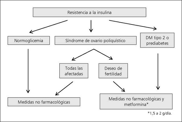 dieta para resistentes a la insulina en chile
