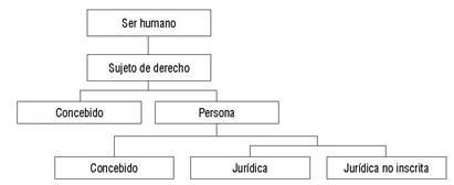80cdb7fae0a0 Clasificación del sujeto de derecho frente al avance de la genómica ...