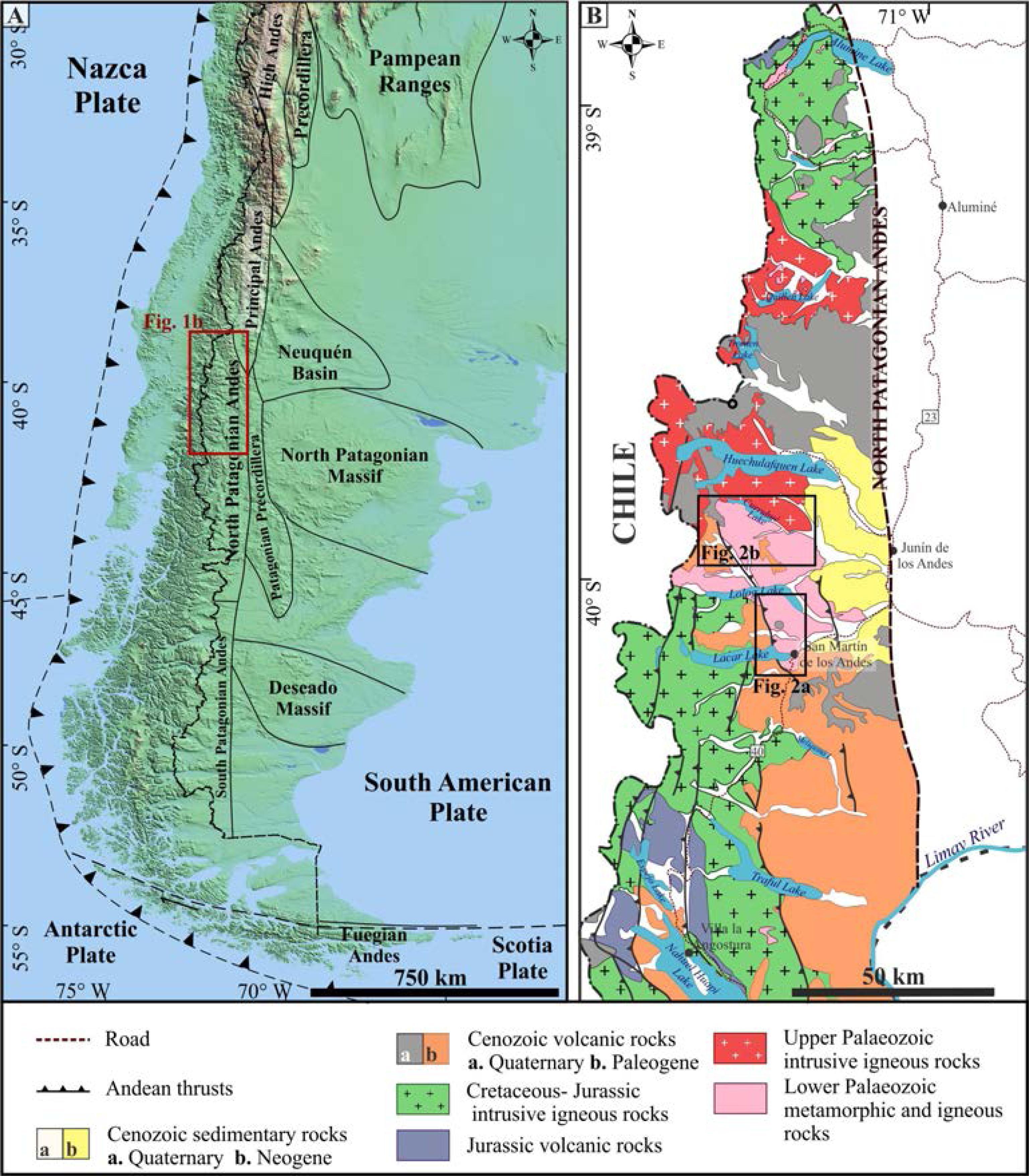 Evolución del basamento paleozoico de los Andes Norpatagónicos en el ...
