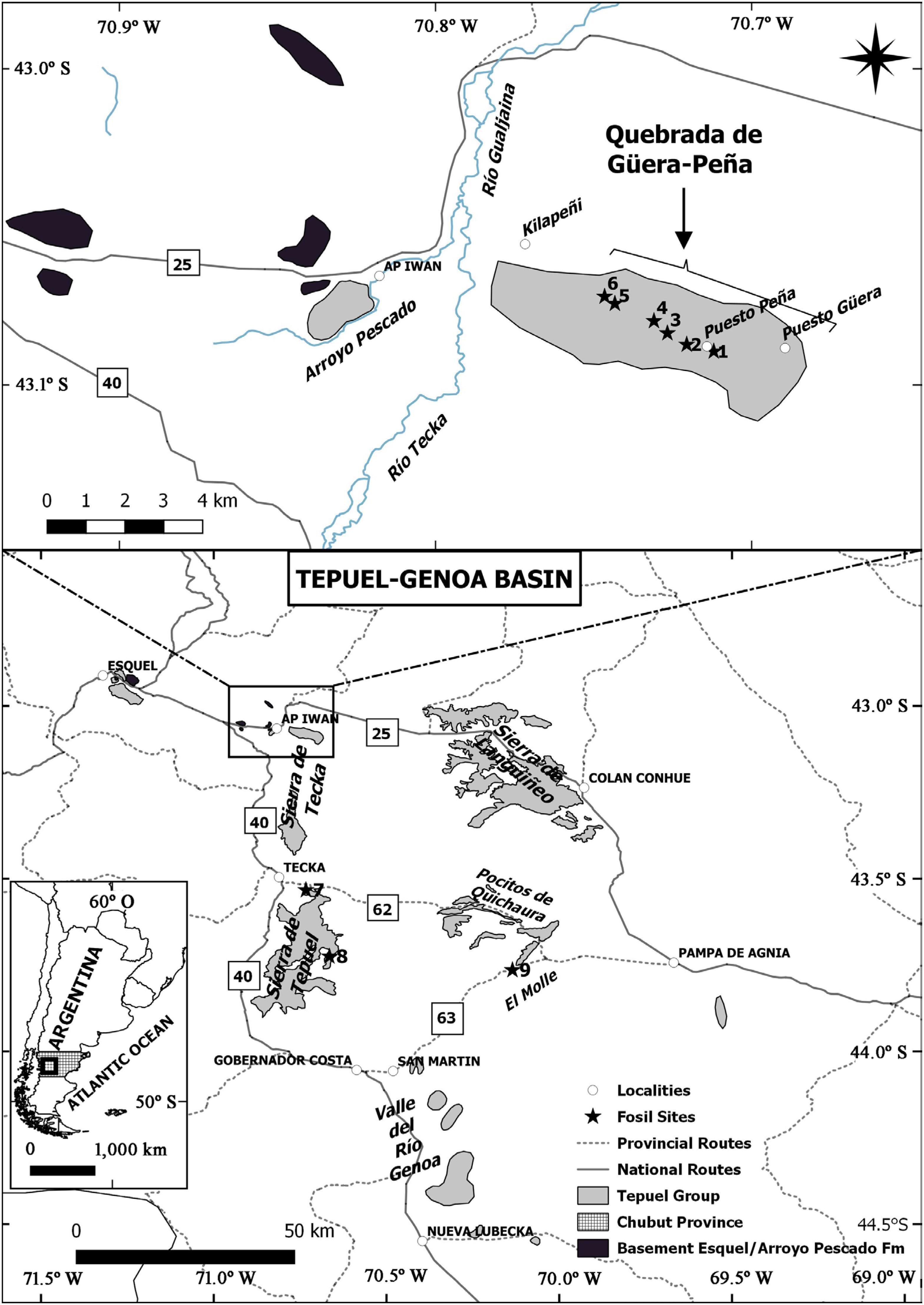 Los Depósitos Carboníferos Del Norte De La Sierra De Tecka