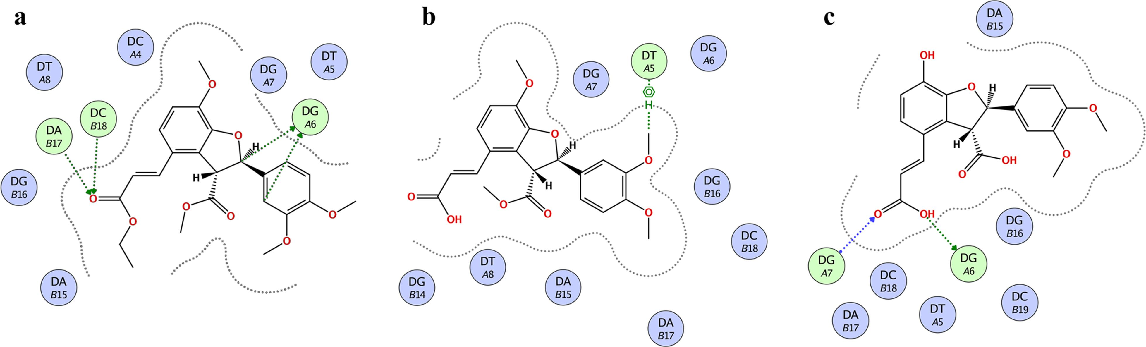 Isolation of dihydrobenzofuran derivatives from