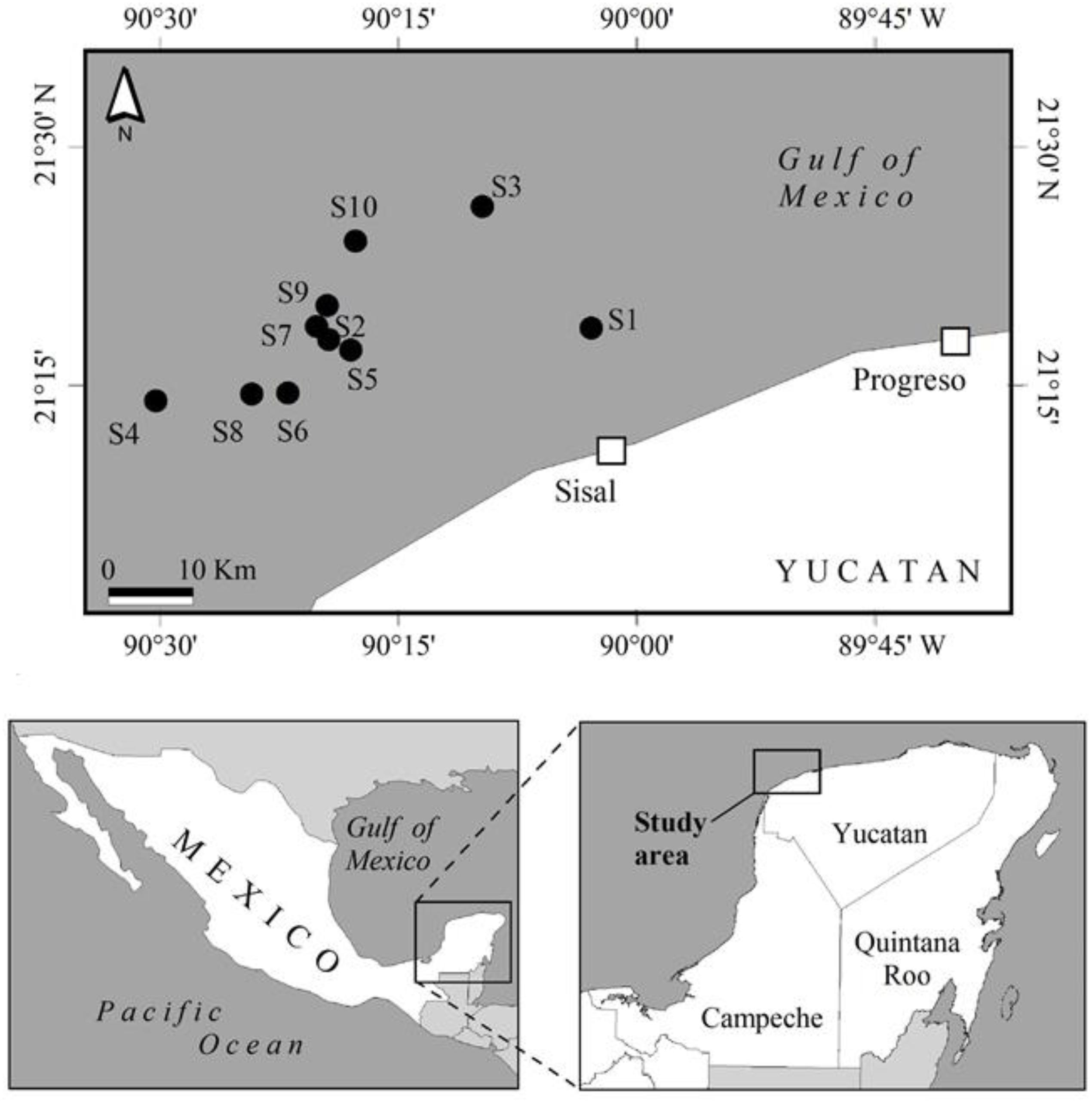 Density And Population Parameters Of Sea Cucumber